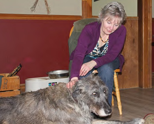 Animal Reiki with Deva the Irish Wolfhound
